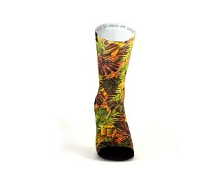Pacifico Forest Socks